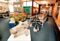High street , Skipton , Craven Museum -