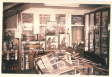 1960s: upstairs in the Museum (1/3) In the 1950s, the Museum gained an extra room in Skipton Library. This photo shows Librarian and curator Percy Baldwin with part of the taxidermy collection, and one of the original cases that was still in use up until 2018.
